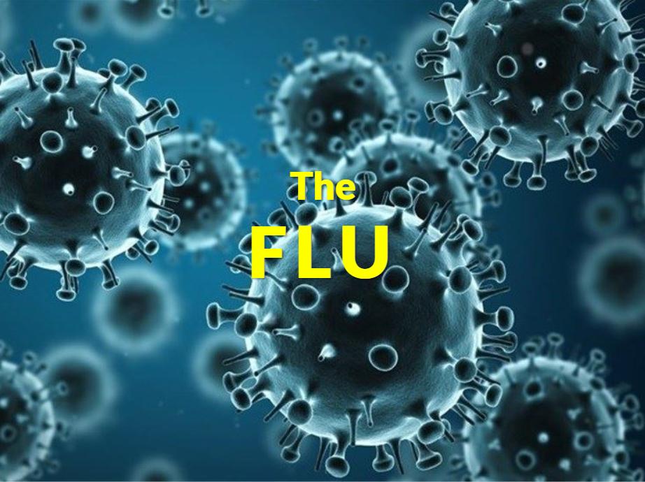 The Flu Course