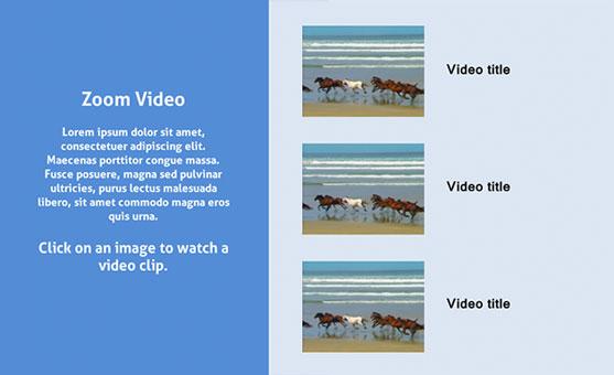 Storyline 2 Zoom Video Template Freebie