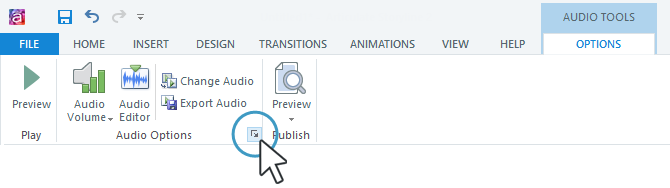 Audio Options Button