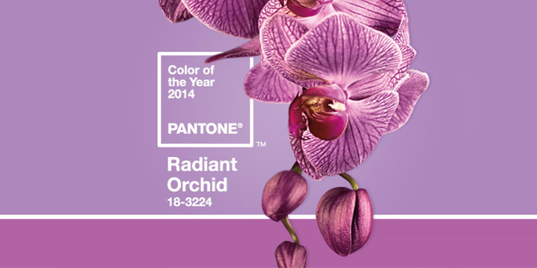 Create a Radiant Template with Pantone's Color of the Year