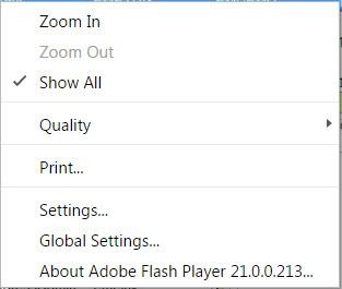 flash player menu