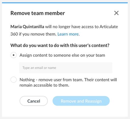 Remove team member window