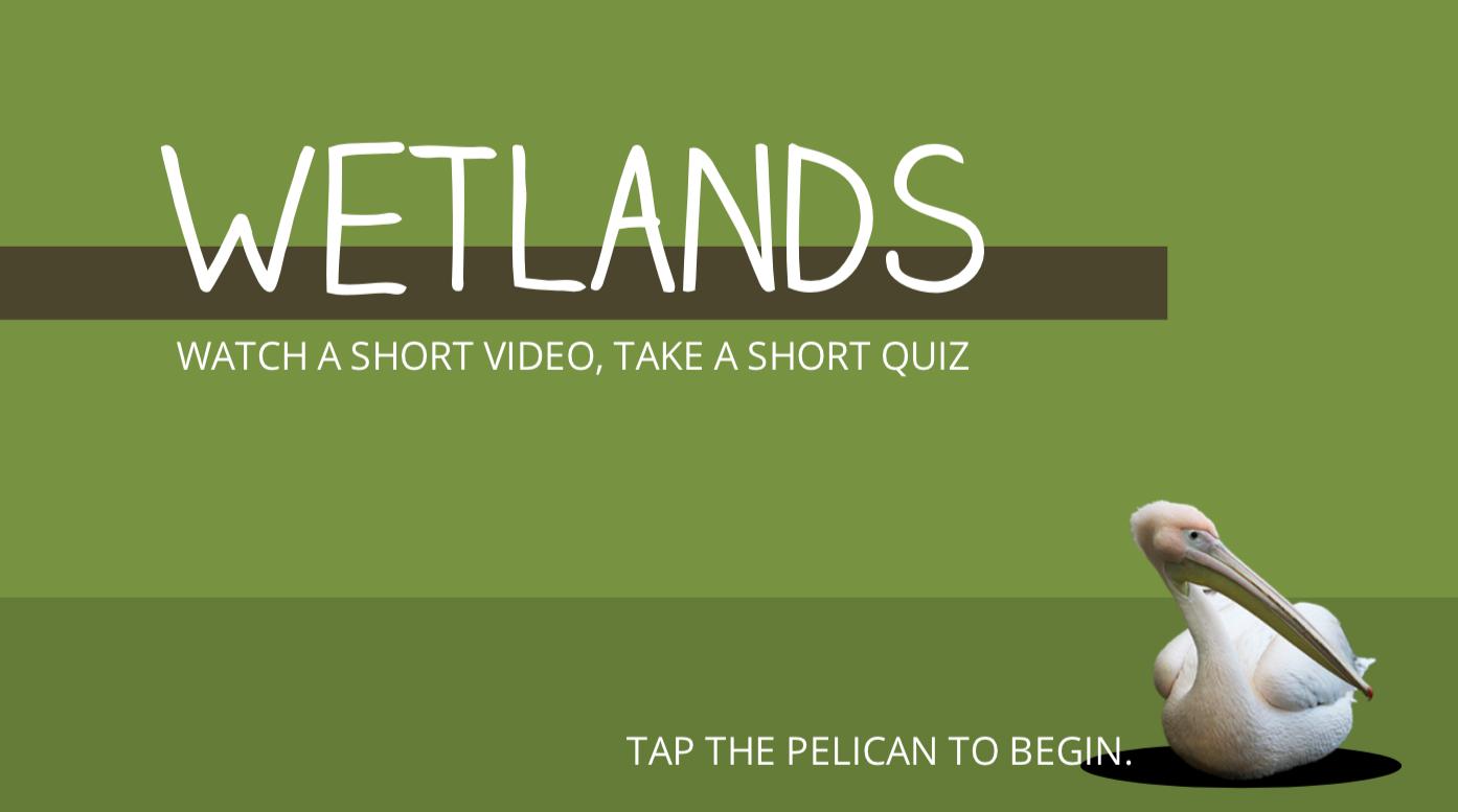 Wetlands Quiz image