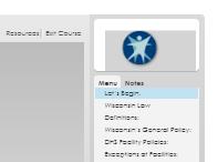 Offset Logo Screen Capture