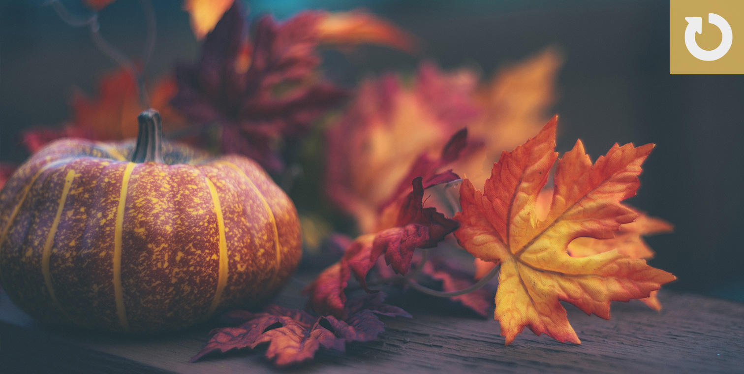 20 Autumn-Themed Course Starters and E-Learning Templates #302