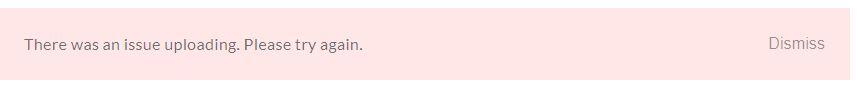 Upload Logo in Rise Error Message